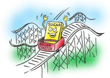 Blood-Sugar-Rollercoaster-e1463702241280-455x321